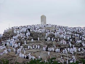 فرازی از دعای امام حسین در صحرای عرفات